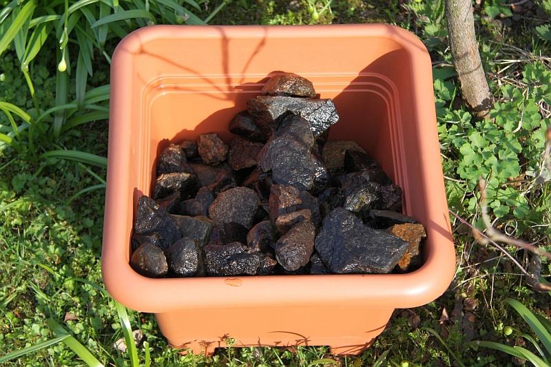 bienentraenke selbstgebaut majas pflanzenblog