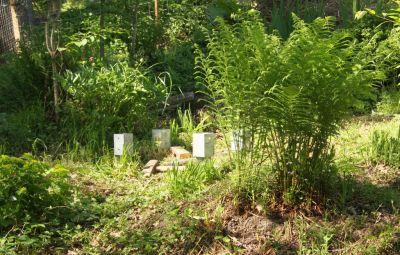 Geplanter Bienenstand