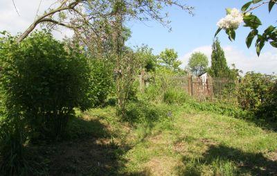 Rundgang im Garten