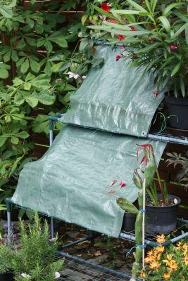 Regenschutz für Kakteen