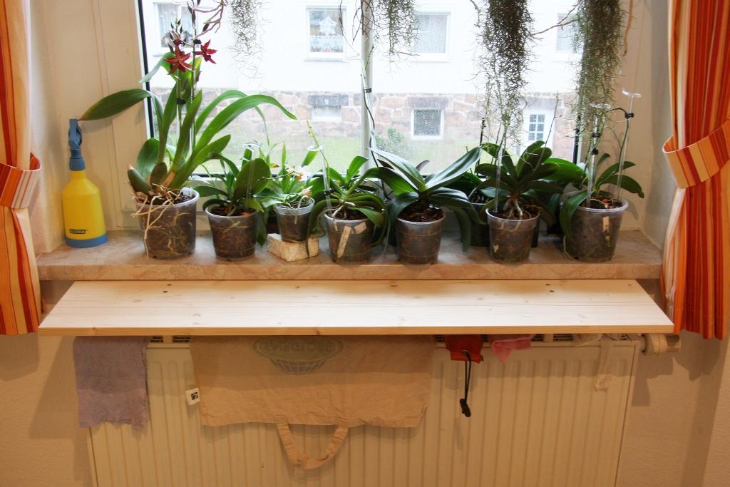 orchideen vor heizungsluft auf fensterbank sch tzen. Black Bedroom Furniture Sets. Home Design Ideas
