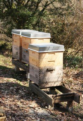 12er Dadantbeuten mit Honigräume