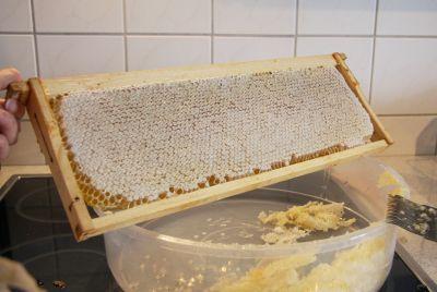 Perfekt verdeckelte Honigwabe