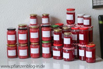 Johannisbeer-Marmelade