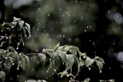 Weiches Regenwasser