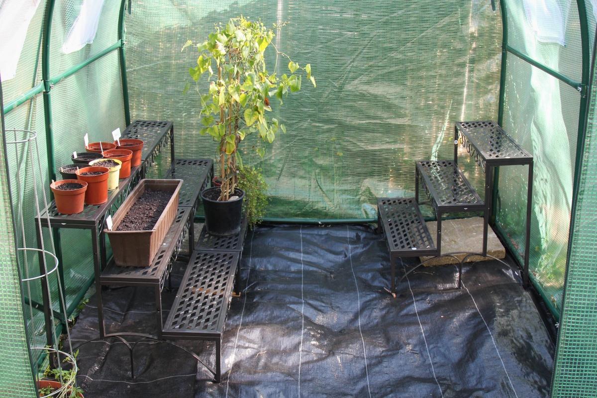 mein neues foliengew chshaus mega viel platz majas pflanzenblog. Black Bedroom Furniture Sets. Home Design Ideas