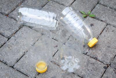 Plastikflaschen als Bewässerungshilfe