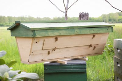Top-Bar-Hive Bienenbeute