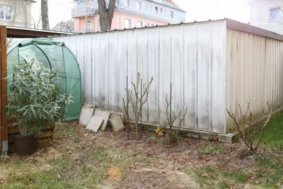 Oleander und Duftrosen